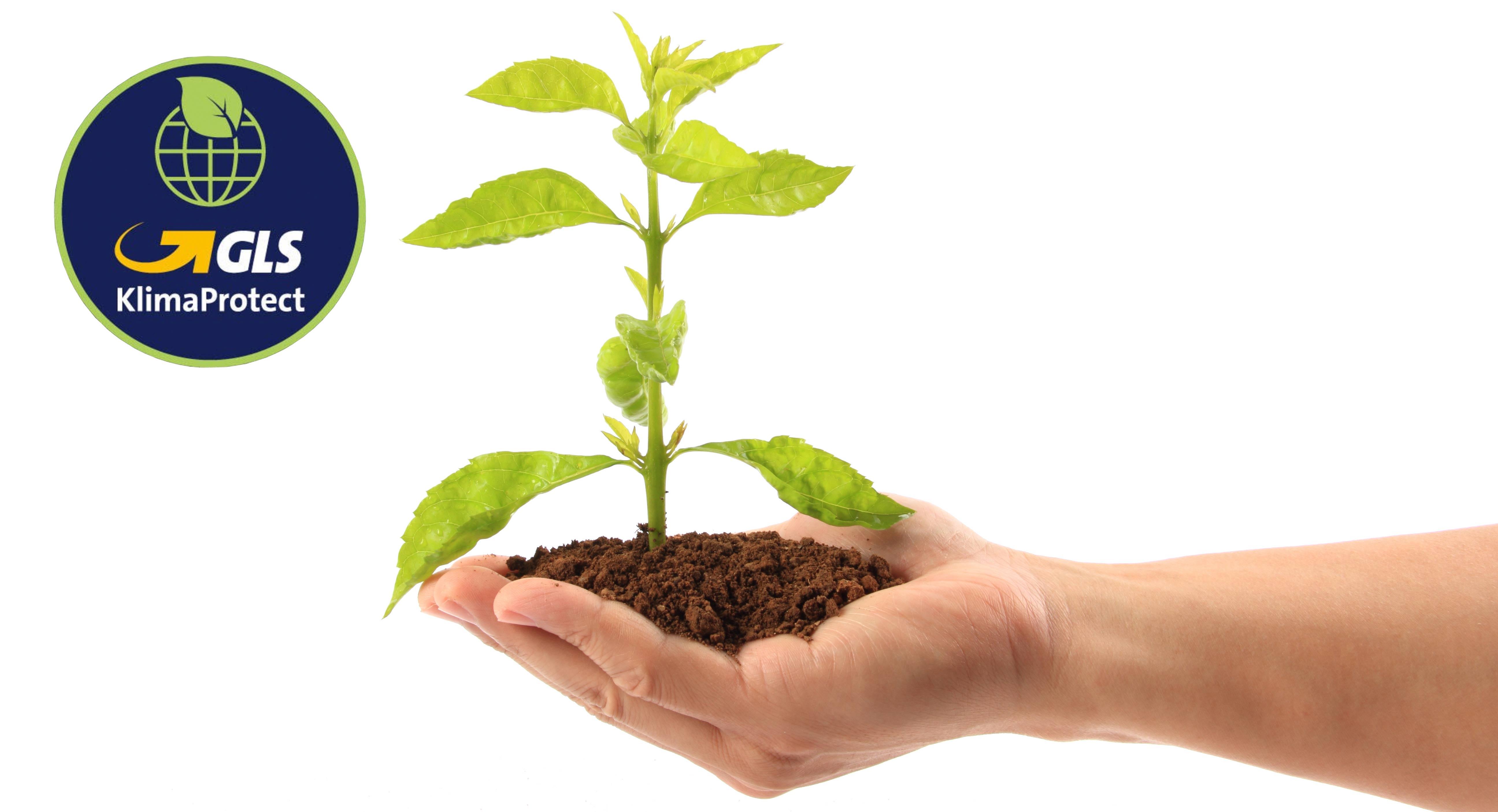 Nachhaltigkeit-GLS